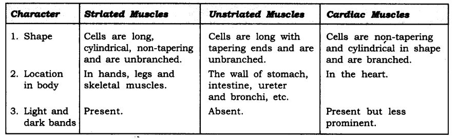ncert-solutions-for-class-9-science-tissues-3