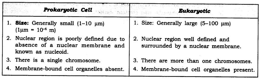 ncert-solutions-for-class-9-science-the-fundamental-unit-of-life-1