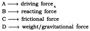 ncert-solutions-for-class-9-science-force-and-laws-of-motion-24