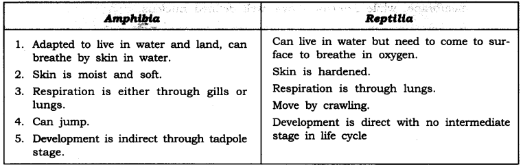 ncert-solutions-for-class-9-science-diversity-in-living-organisms-7